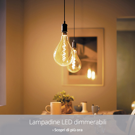 Lampadine LED dimmerabili